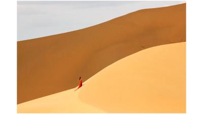 사막의 여인