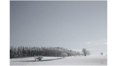 비에이의 겨울