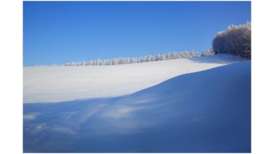 비에이 겨울