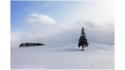 마지막 겨울