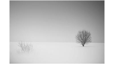 겨울 단상