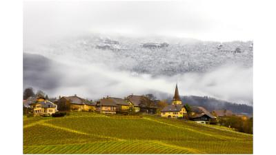 스위스 3