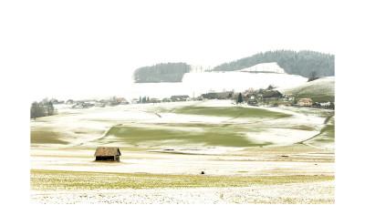 스위스 4