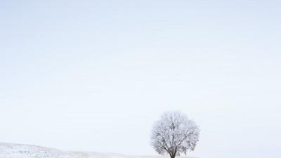 팔루스 겨울21