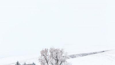 팔루스 겨울23